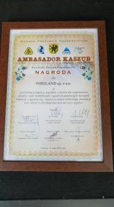 Wireland Ambasadorem Kaszub